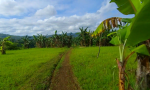 Visiting-Cambanog-Falls-7-22-screenshot