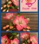 St. Bernadettes Flower Shop (32)