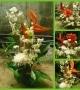 St. Bernadettes Flower Shop (34)